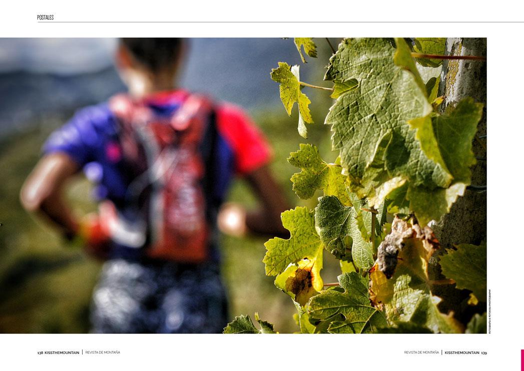 Valtellina Wine Trail 3