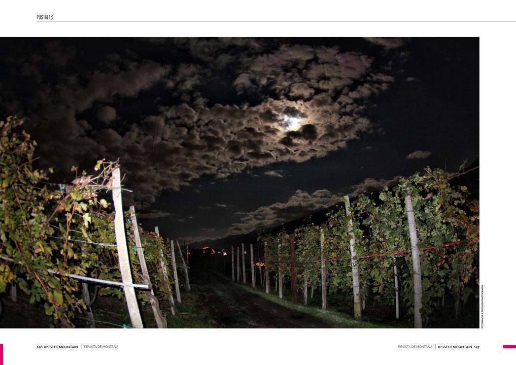 Valtellina Wine Trail 6